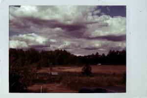 the Farm: